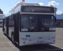 Автобус МАЗ 103966