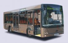 Автобус МАЗ 226015
