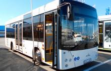 Автобус МАЗ 206015