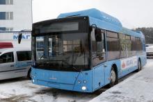 Автобус МАЗ 203965