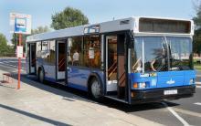 Автобус МАЗ 103515